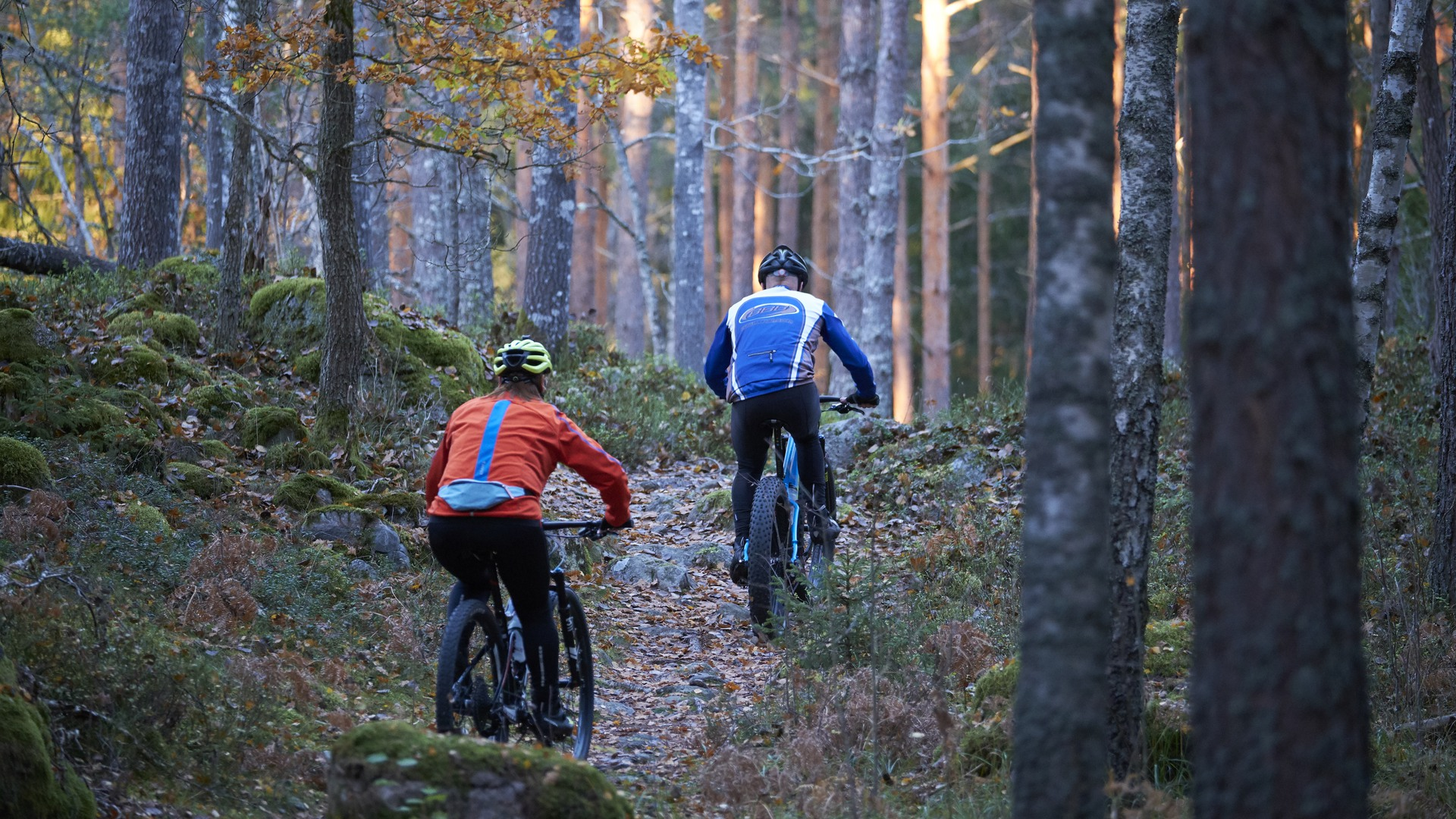 Mountainbike-cyklister